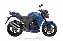 Motorrad kaufen Neufahrzeug SYM Wolf 250 i (naked)