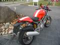 DUCATI 620 I.E. Monster Occasion